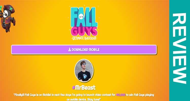 Play Fall Guys.com Review