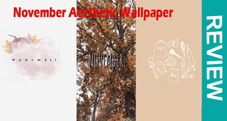 November Aesthetic Wallpaper (Nov 2020) The Best Results.